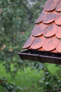 Regen, Dachrinne und ...
